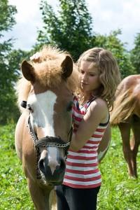 hest føl rabatkoder rabatkode heste