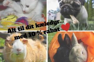 rabat rabatkode hund kat marsvin kanin foder mad piller legetøj kæledyr