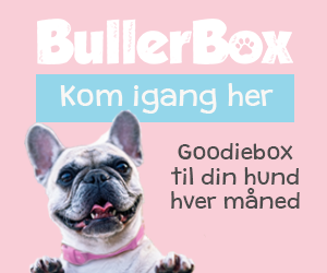 Goodiebox til din hund